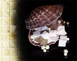 Pearl Shell Tiles