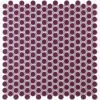 Eden Rimmed Summer Plum Penny Round Polished Ceramic Tile